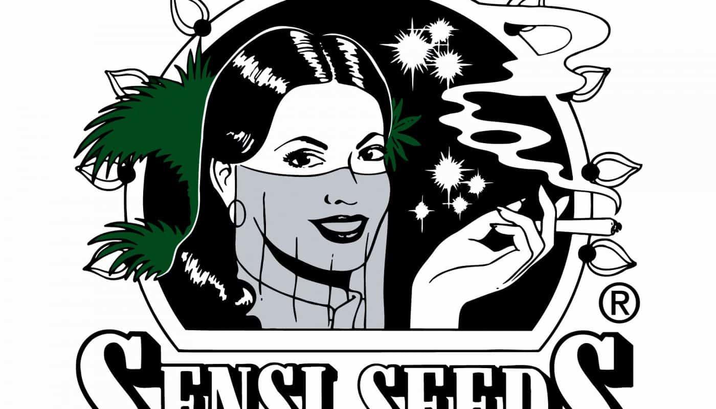 Sensi seeds, banco de semillas y productos de CBD