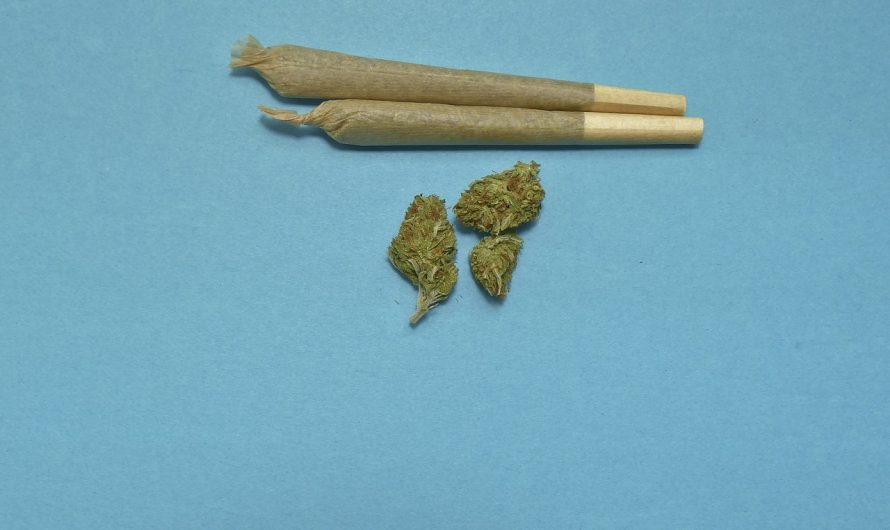 ¿Cómo fumar CBD? E-liquids y cogollos CBD