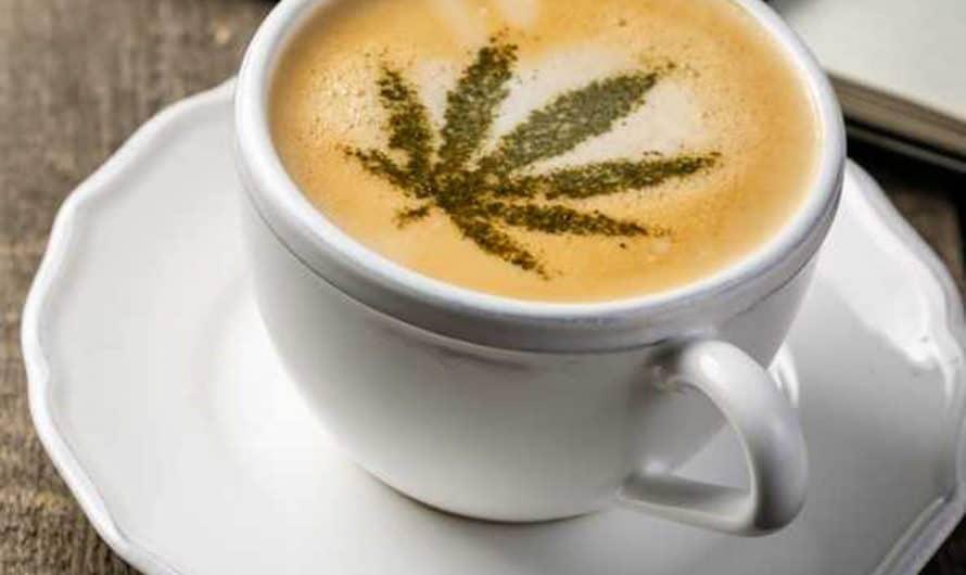 Café con CBD, efectos y usos